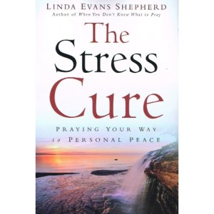 The Stress Cure-500x500