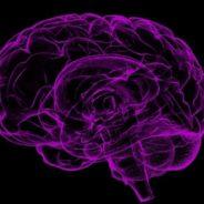 Snapshots of Dementia: Desperately Seeking Diagnosis